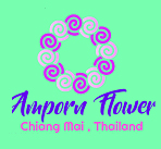 Amporn Flowers Chiangmai ขายส่งดอกไม้สดตรงจากสวน เชียงใหม่ จำหน่ายดอกไม้ในประเทศและต่างประเทศ ราคาส่ง ตัดสดจากสวนทุกวัน